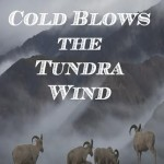 Fisher_TundraWind