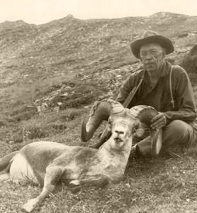 Jack-Oconnor-stone-sheep